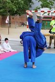 Judo exhibition — Stock Photo