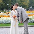 Autumnal wedding — Foto Stock