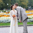 Autumnal wedding — Stockfoto