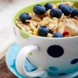 Breakfast muesli — Stock Photo #12000400