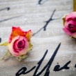 Stock Photo: Dried roses