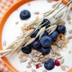 Yogurt with blueberries — Stock Photo #12000470