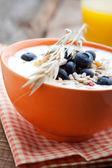 Yogurt with blueberries — Stock Photo