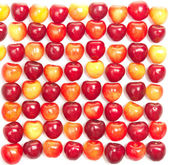 Rows of red and yellow cherries on a white — Stock Photo