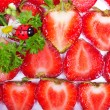 Fresh strawberry slices and ladybugs — Foto Stock