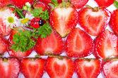 čerstvé jahodové řezy a berušky — Stock fotografie