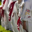 Tae Kwon Do — Stock fotografie