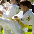 Tae Kwon Do — Stockfoto