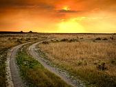 在大草原的日落 — 图库照片