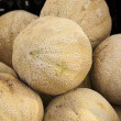Cantaloupe — Stock Photo #11693609