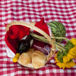 Picnic - Stock Photo