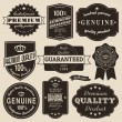 Stockvektor : Vintage Labels Set