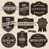 Vintage Labels Set — Stock Vector