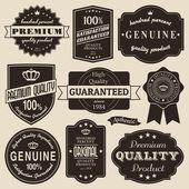 Vintage etiketleri kümesi — Stok Vektör