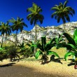 Tropical paradise — Stock Photo #11005963