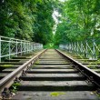 Dilapidated train track in forest — Foto Stock