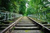 Zdezelowanym kolejowego toru w lesie — Zdjęcie stockowe