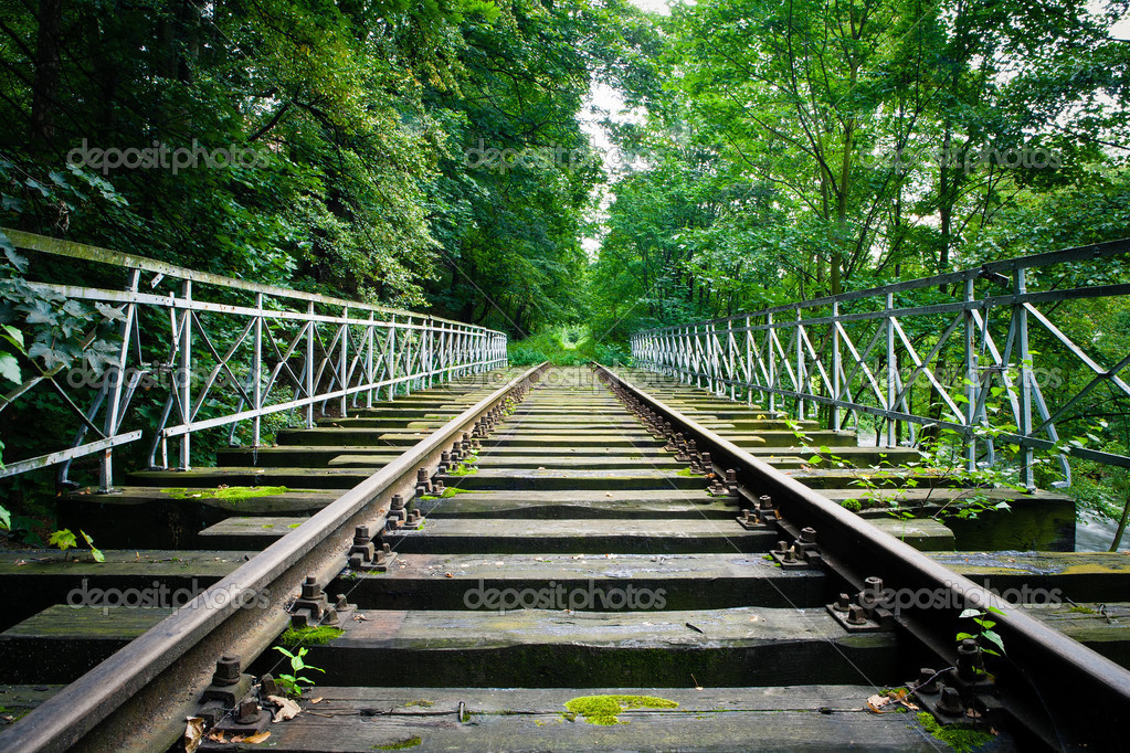 Dilapidated train track in forest — Stock Photo #11158163