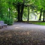 Park on rainy day — Stock Photo