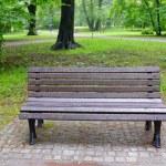 Park on rainy day — Stock Photo #11505113