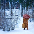 Wintry walk — Stock Photo