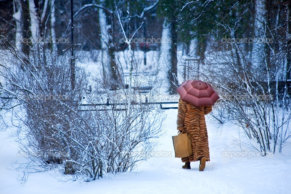Wintry walk — Foto Stock #11799219