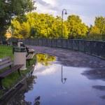 Park on rainy day — Stock Photo #11925843