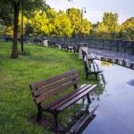 Park on rainy day — Stock Photo #11926049