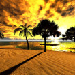 Hawaiian sunset in tropical paradise — Stock Photo #11988564