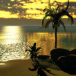 Hawaiisunset in tropical paradise — Stock Photo #12004374