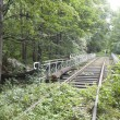 Old railway track — Stock Photo #12296921