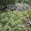 Old railway track — Stock Photo