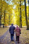 Starší pár v parku — Stock fotografie