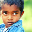Cute indian little boy - Stock Photo