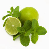 Fresh lime with mint — Stock Photo