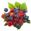 Mix of fresh berry — Stock Photo