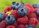 Raspberry with blueberry — Stock Photo