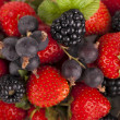 Strawberry, raspberry and blackberry — Stock Photo
