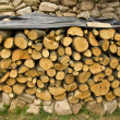 Piled firewood trunks — Stock Photo