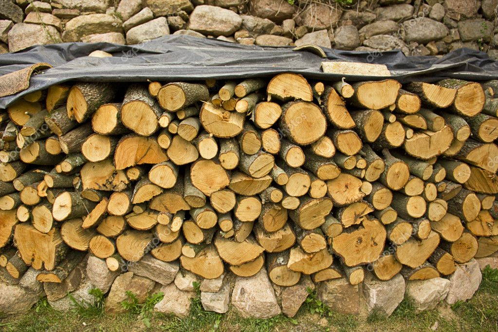 Piled firewood trunks, outdoor the home  Stock Photo #11678208