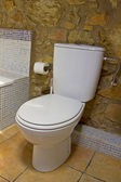 Toilet in a bathroom — Stock Photo