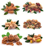 Set of nuts on a white background — Stock Photo
