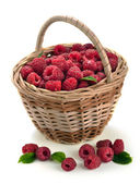 Fresh sweet raspberries in a wicker basket — Stock Photo