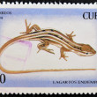 Royalty-Free Stock Photo: CUBA - CIRCA 1994: A stamp printed in Cuba shows a lizard endemic, circa 1994