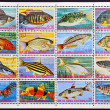 EQUATORIAL GUINEA - CIRCA 1974: A set stamps printed in Guinea Ecuatorial shows exotic fish, circa 1974. - Stock Photo