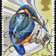 Royalty-Free Stock Photo: UNITED KINGDOM- CIRCA 2000: A stamp printed in Great Britain shows kingfisher, circa 2000