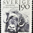 SWEDEN - CIRCA 1984: A stamp printed in sweden shows Musk Ox, ovibos moschatus, circa 1984 — Stock Photo