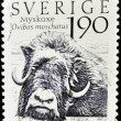 Stock Photo: SWEDEN - CIRCA 1984: A stamp printed in sweden shows Musk Ox, ovibos moschatus, circa 1984