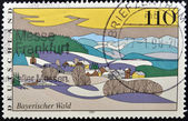 GERMANY - CIRCA 1997: stamp printed in Germany shows Bavarian Forest, circa 1997. — Stok fotoğraf