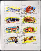 STAFFA - CIRCA 1973: collection of stamps from Staffa shows animals, circa 1973 — Stock Photo